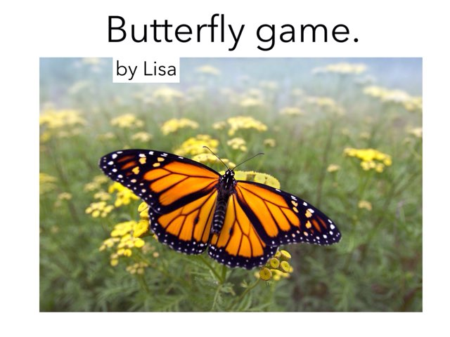 Butterfly game by Room 207