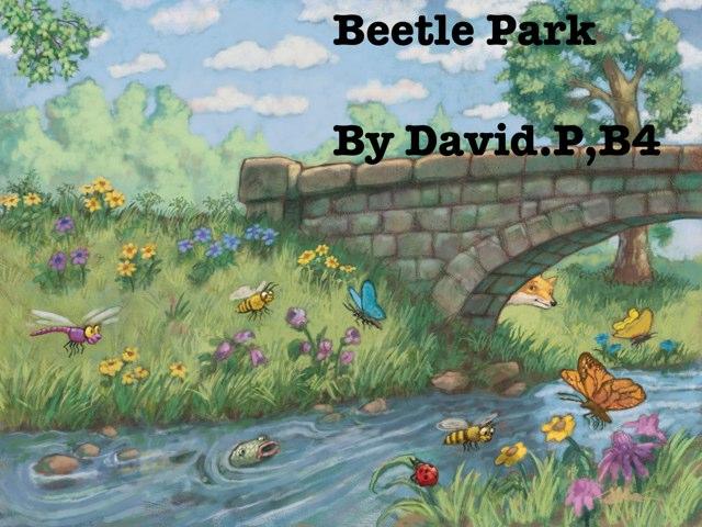 Davids,Beetle,Project by Vv Henneberg