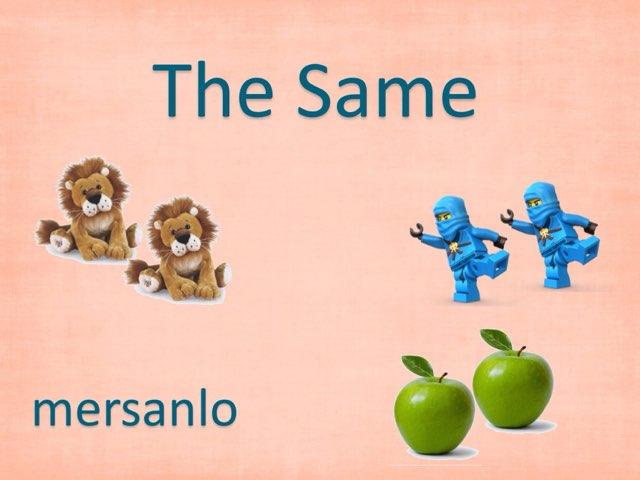 THE SAME by Mercedes Sanchez