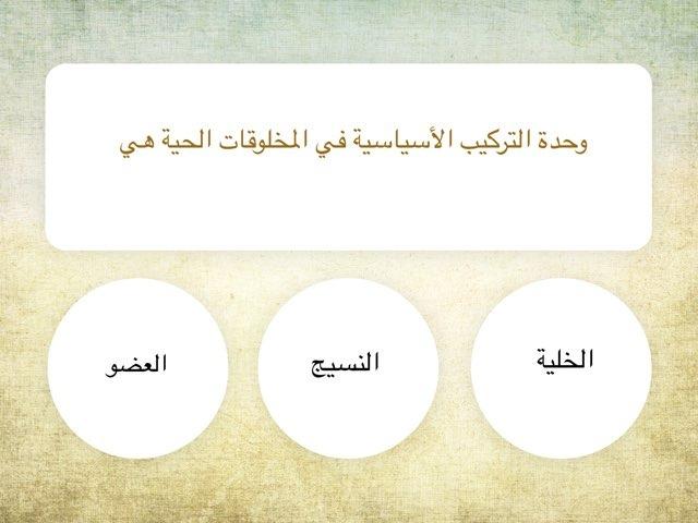 لعبة البرنامج١ by فريدة مريزن