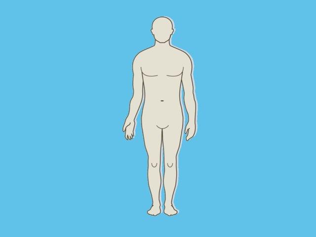 Body Parts by Joyce Klinkhamer