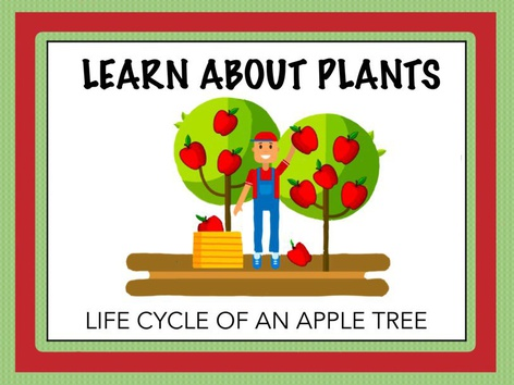 Learn About Plants - Apples by Cici Lampe