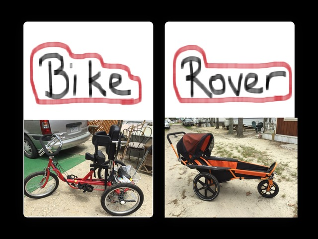 Bike Or Rover by Ally T