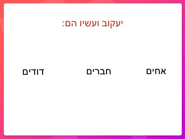 תורה  by Edri Rinat