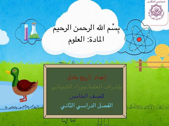 الشغل و الطاقة by Areej Zaman