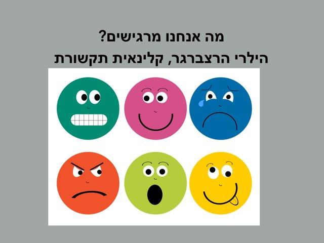 איך אנחנו  מרגישים ?   by Hilary Herzberger