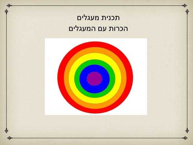 תכנית מעגלים הכרות by צפנת הלוי