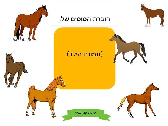 חוברת הסוסים- הצליל s (ס׳) by Ayelet Levy Kaminsky