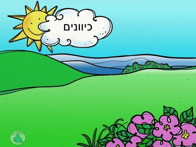 כיוונים אושרת פרץ by Oshrat Peretz