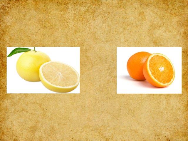 פירות הדר by segeliss Segeliss