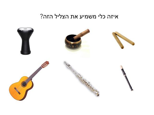 זיהוי כלי נגינה by Yael Eilat