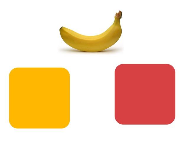 התאמת צבעים by ניצני יערה א.ד.נ.מ