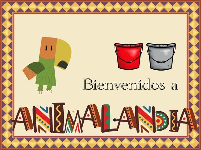 Animalandia by Joel & Marta