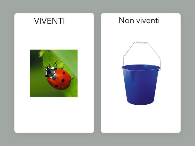 Viventi by Raffaella Bovio