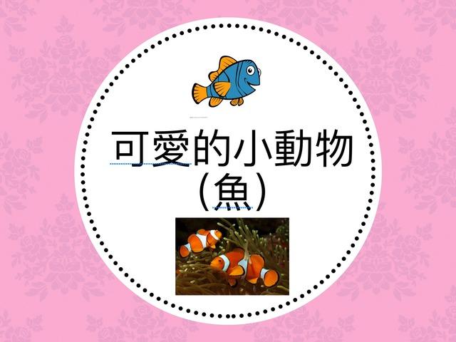可愛的小動物(魚) by Bell Chung
