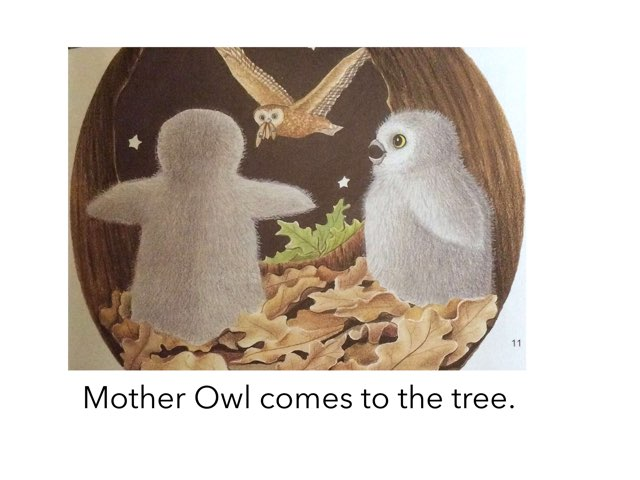 The Baby Owls by Teneille Dardis