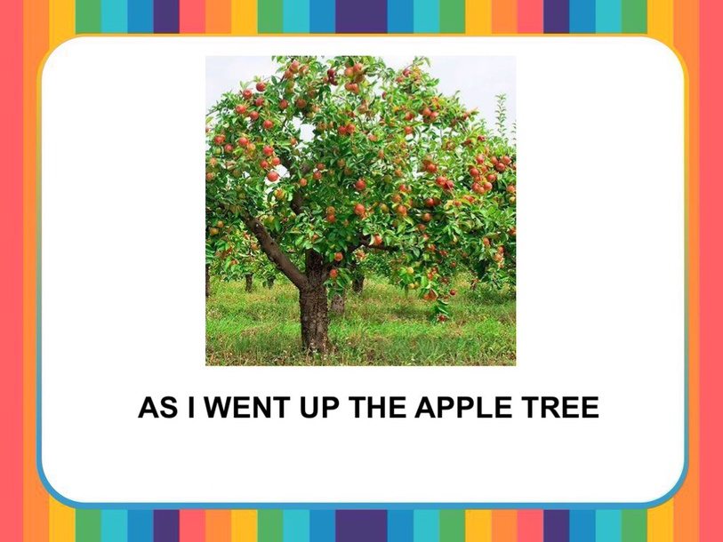 AS I WENT UP THE APPLE TREE by Camila Dias