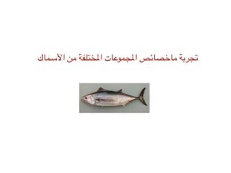 تجربة ماخصائص الاسماك by dalia aziz