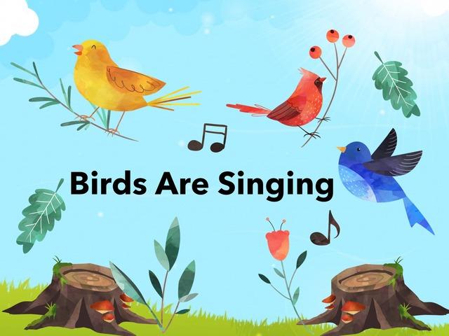Birds Are Singing by Hadi  Oyna