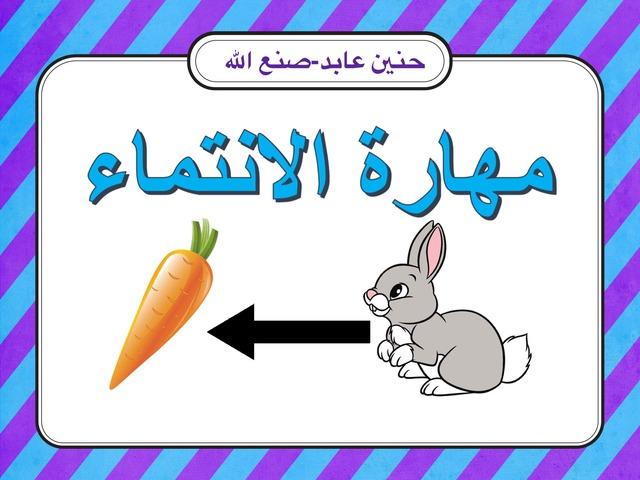 الانتماء by Hanen Sanallah