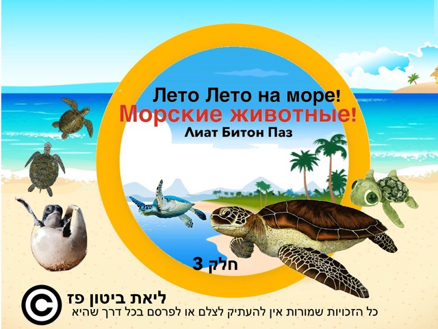 Животный Мир Моря Лето Лето на море 3 Часть by Liat Bitton-paz