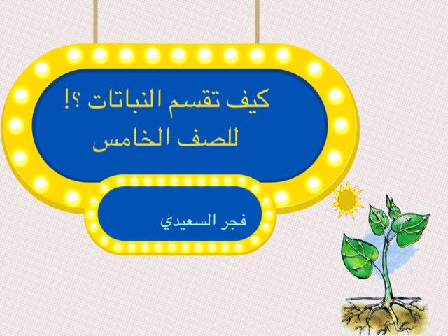 كيف تقسم النباتات by Fajer Alsaeedi