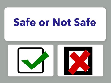 Safe Or Unsafe by Carol Smith