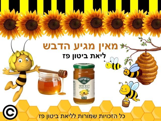 מאין מגיע הדבש לראש השנה by Liat Bitton-paz