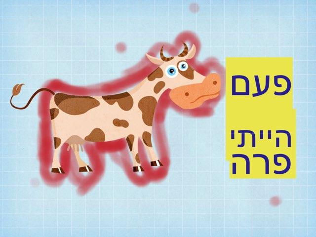 פעם הייתי פרה by Tal Michalovici