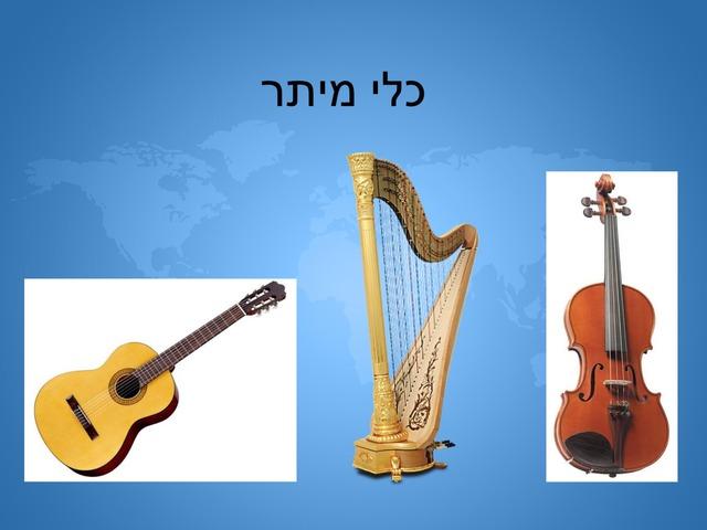 כלי מיתר by Rinat Essoudry