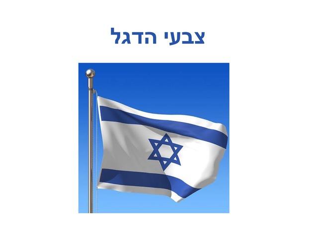 צבעי הדגל  by Shy Biber