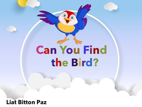 Can You Find The Bird? by Liat Bitton-paz