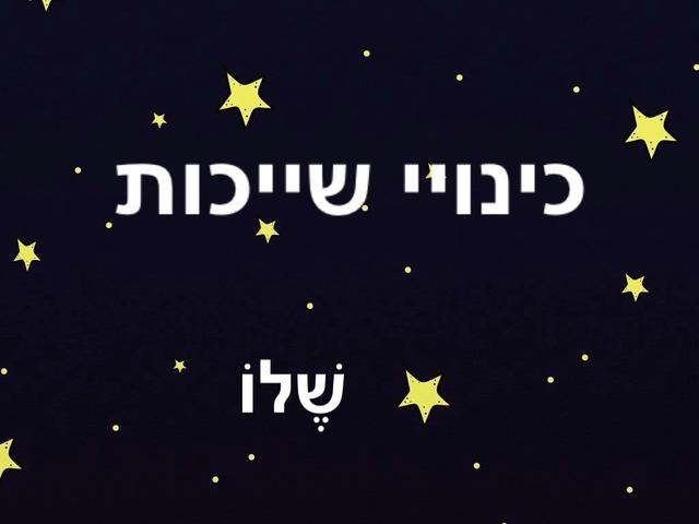 כינויי שייכות by Rotem Baruch