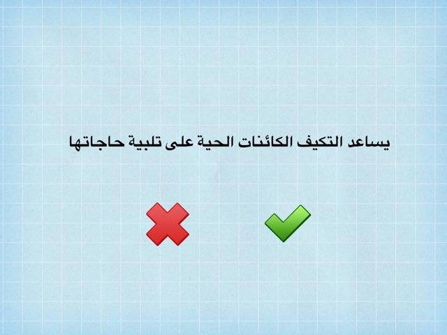 الصف الرابع by fatma ahmed