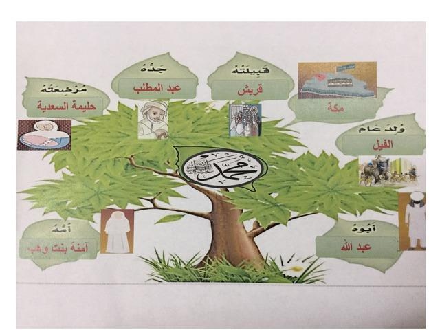 مولد الرسول  by Esmat Ali