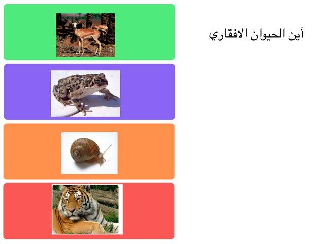 لعبة 64 by omabdullah alenazi