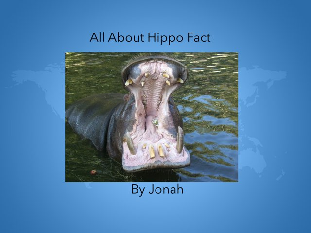 Hippos By Jonah by Hulstrom 1st Grade