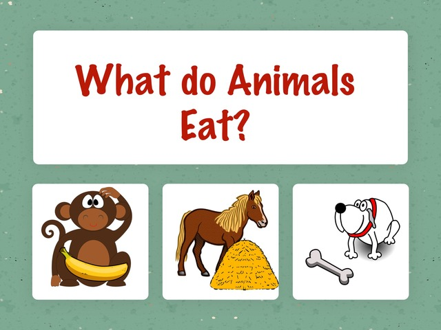 What Do Animals Eat Game by Hadi  Oyna