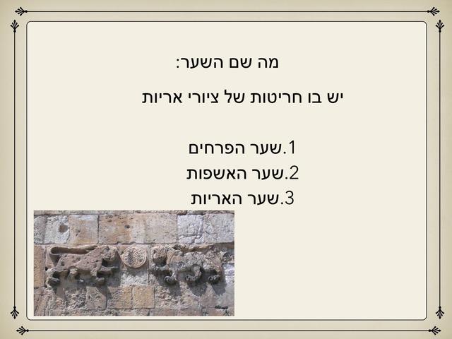 שערי ירושלים ספיר by מכללה תלפיות