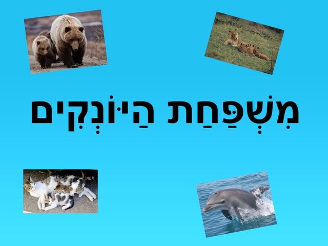 משפחת היונקים-זכר, נקבה, גורים by אנה גרבניקוב