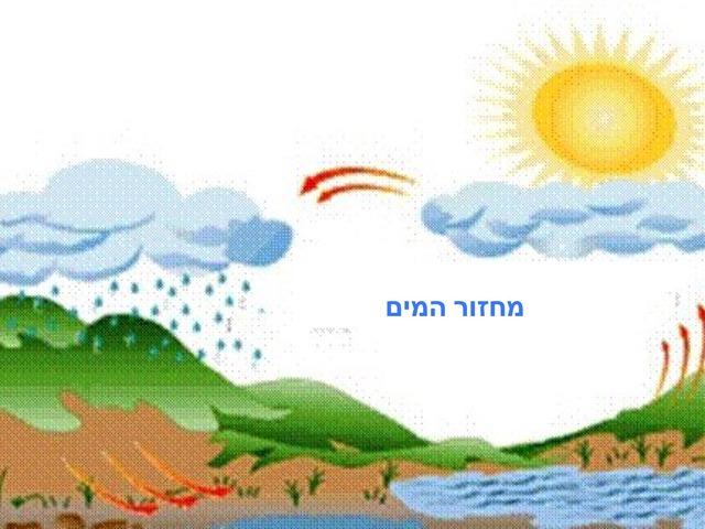 מחזור המים by davida pollak