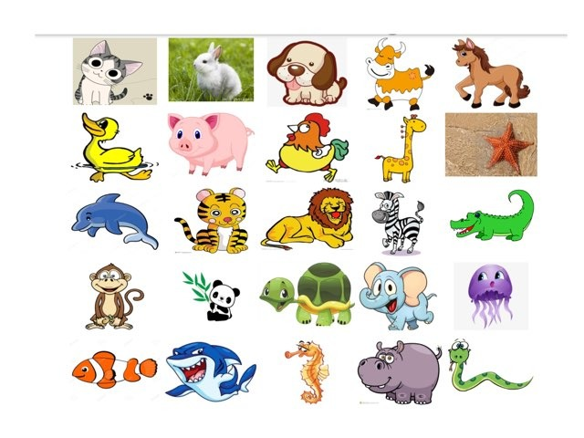 动物世界 2 by Suwen He