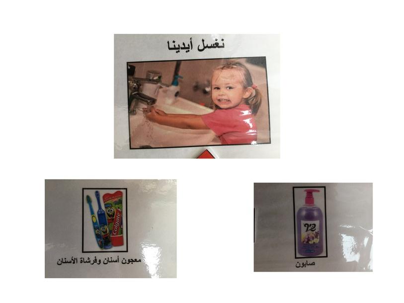 היגיינה 2  by sarah abu Reesh