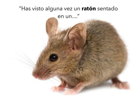 Juego De Rimas by ANA MARTINEZ