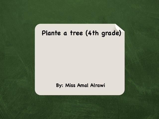 Plant A Tree by Amal kuwait