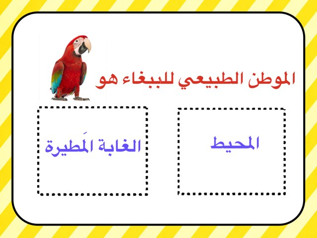 لعبة 25 by Sarah Ahmad