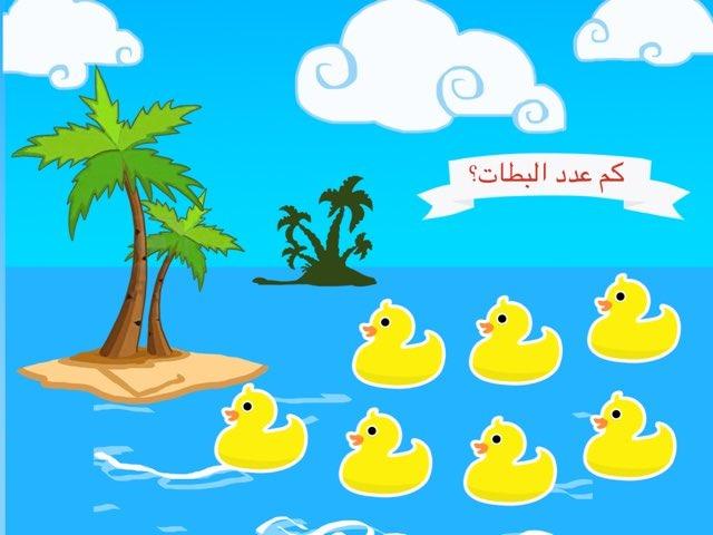 تمهيدي by ساره الدوسري