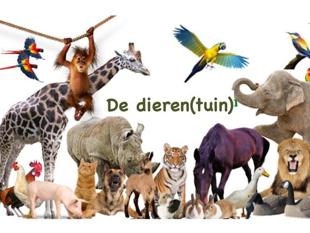 dieren(tuin) by Annemieke Dijkmans