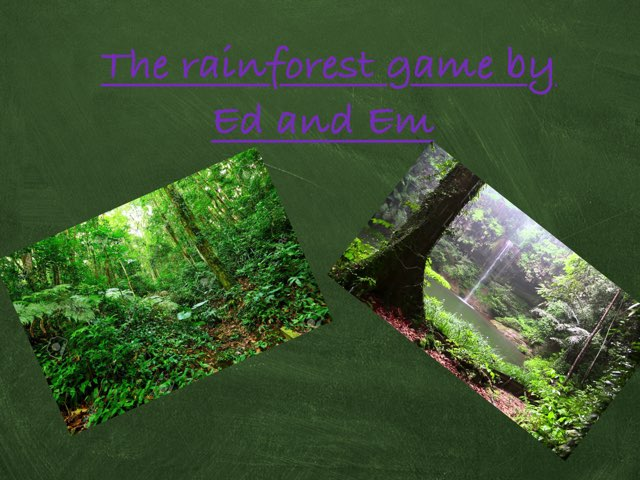Rainforest By ED and EM by Holy Spirit