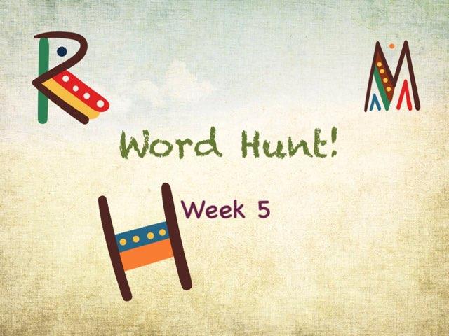 Word Hunt Phonics 3 Practice  by Tony Bacon